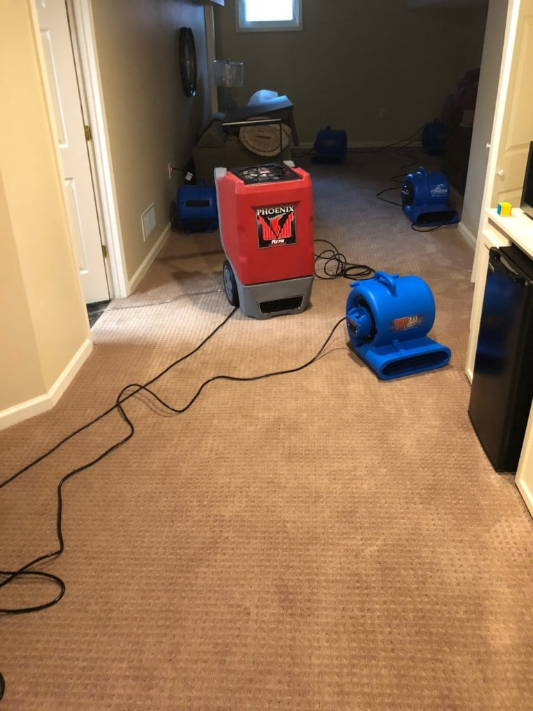 Louisville water damage services