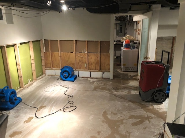 Professional Water damage service louisville