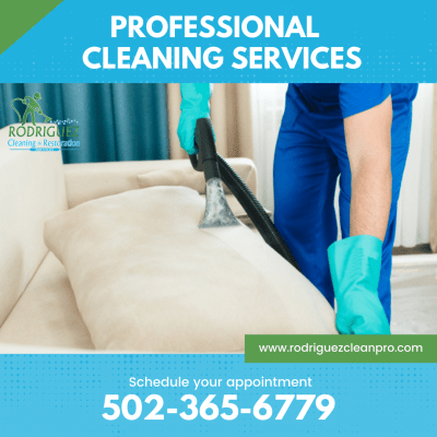 Louisville Upholstery Cleaning