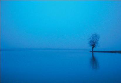 contemplative stillness