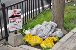 Kagoshima - śmieci
