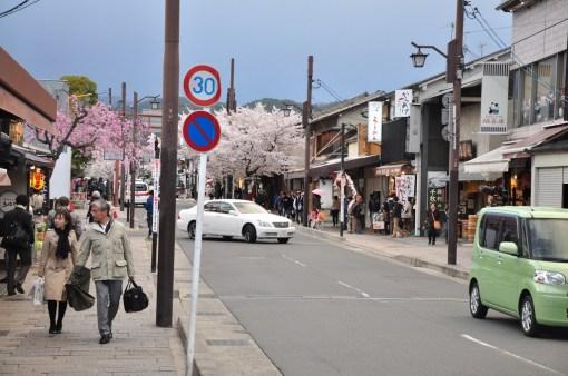 Kyoto Iwatayama