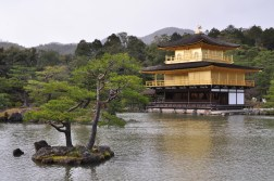 Kyoto Złoty Pawilon