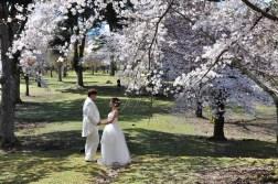 Nara Park i zdjęcia ślubne
