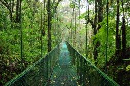 Wiszące mosty w Monteverde