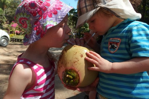 Dzieci piją wodę z kokosa