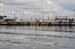 Port Puerto del almirante i kontenery chiquita