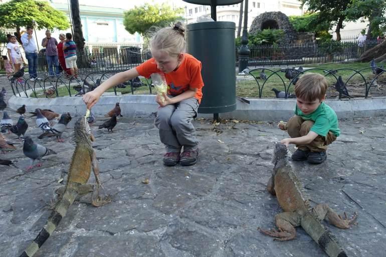 Dzieci karmią Iguany w Ekwadorze