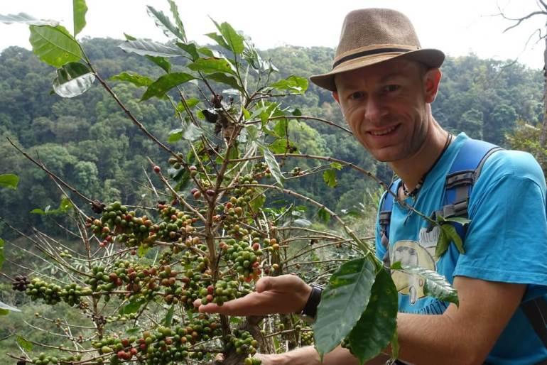 Kawa na zboczach, tuż obok wioski plemienia Akha