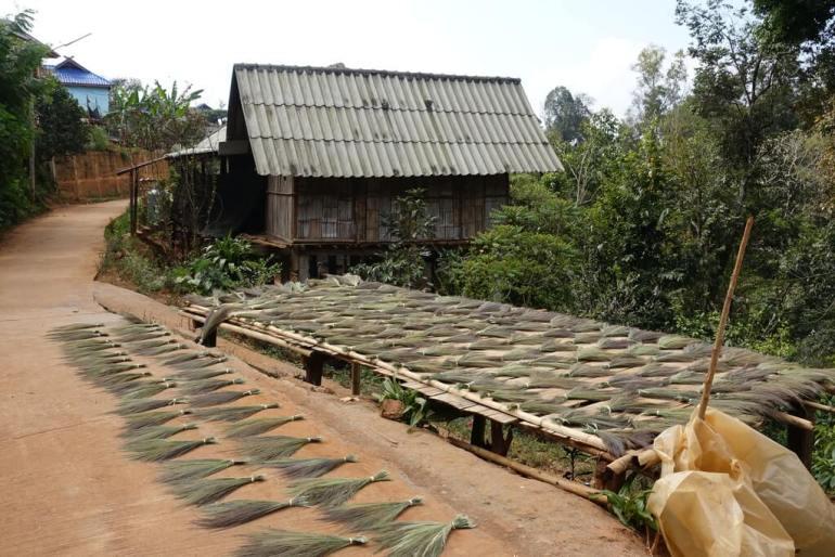 Suszenie traw na miotły