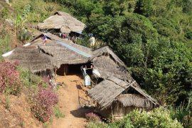 Plemię Akha, herbata Oolong i Arabika na północy Tajlandii