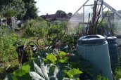 allotment-20
