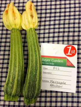 Perfect Courgettes