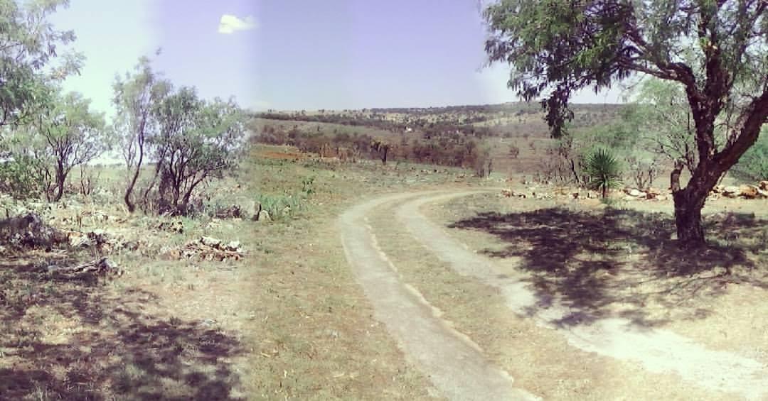 tania-olsson-landskap