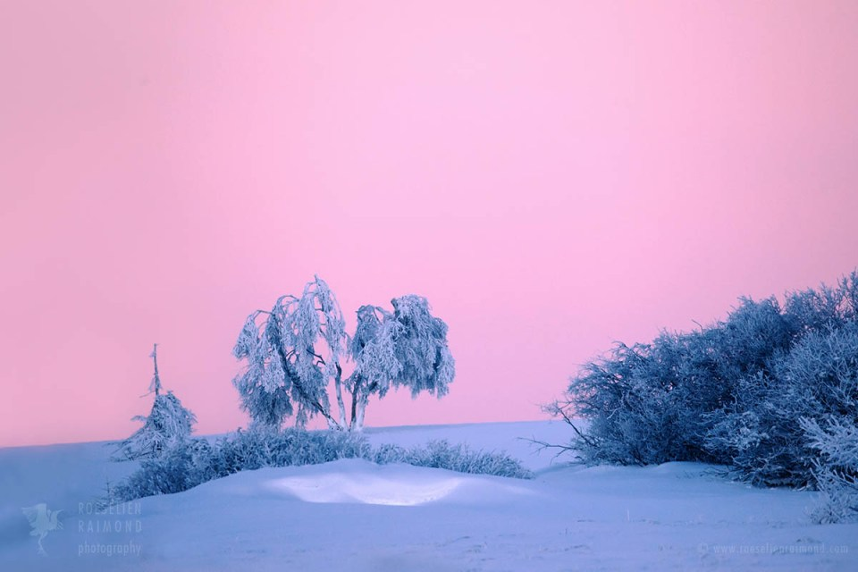 snow sunrise winter
