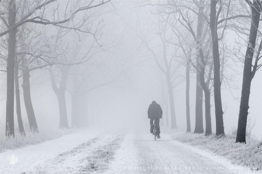 hoar frost rime bike biker person cold winter