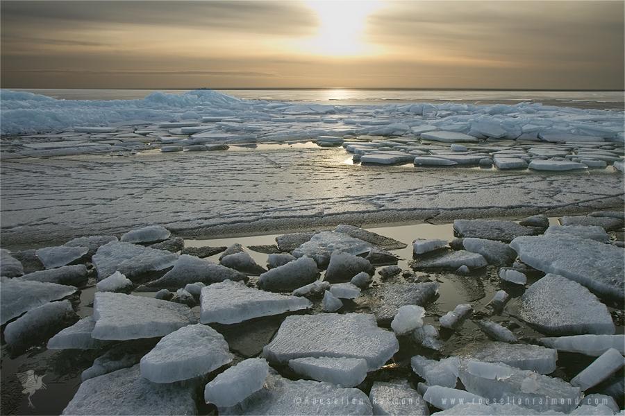 drift ice golden hour sunset
