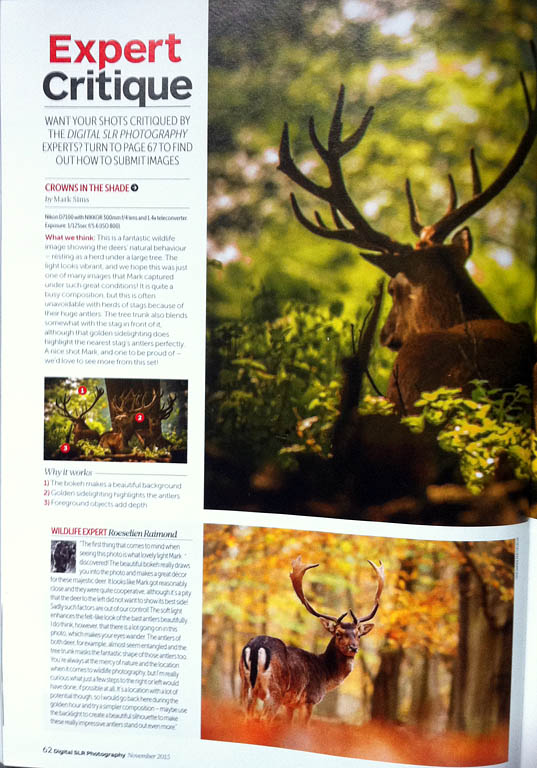 Digital SLR Magazine Expert Critique Roeselien Raimond