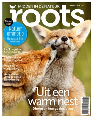Cover roots Magazine