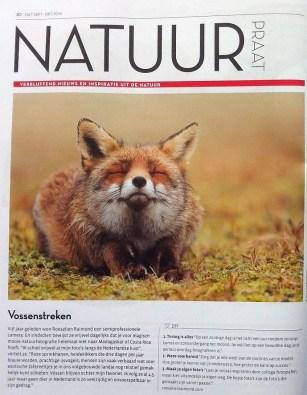 Interview Salt Magazine Zen Vos