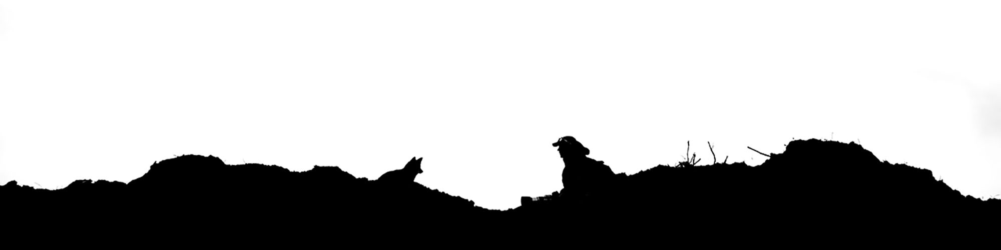 Roeselien fox silhouette