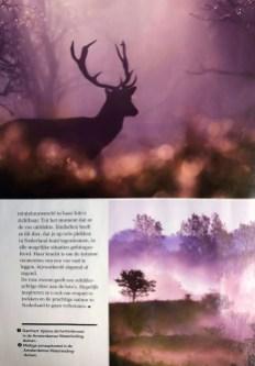 Plus Magazine Hert