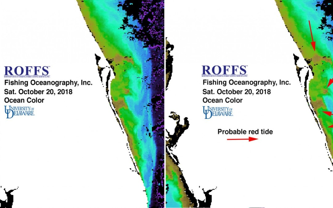 Florida Red Tide Update – October 24, 2018