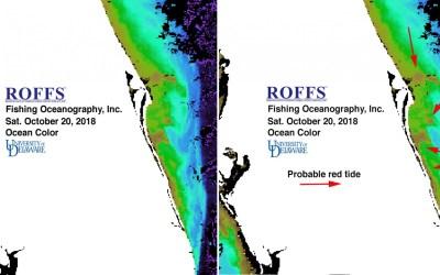 Florida Red Tide Update – October 24, 2018