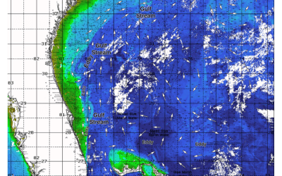 ROFFS™ Southern Florida to Cape Hatteras Spring Season Preview 2019: UPDATE ON U.S. EAST COAST GULF STREAM CONDITIONS