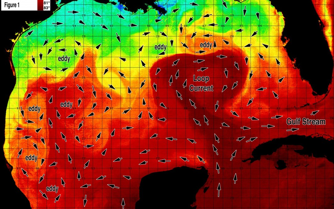 Gulf of Mexico Early Season Preview 2019 EARLY SEASON CONDITIONS LOOK EXCELLENT IN THE GULF OF MEXICO