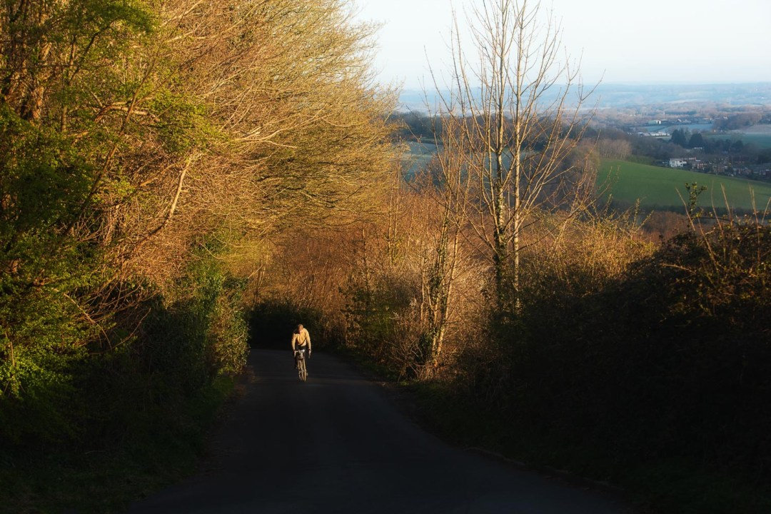 Cyclist emerging from shade on pretty country lane