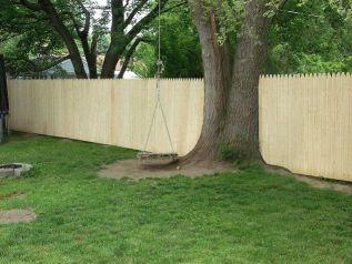 Tree next to fence