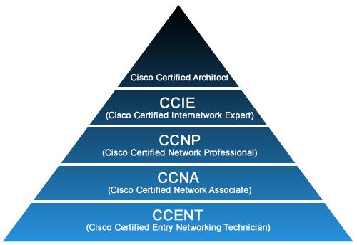 Career As Ccie - Resume Examples | Resume Template