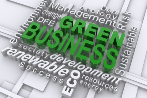Environmental Business For Sale