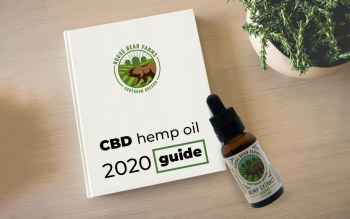 CBD Hemp Oil - 2020 Ultimate Guide for Beginners