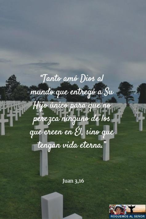 11_03_18_vida_eterna