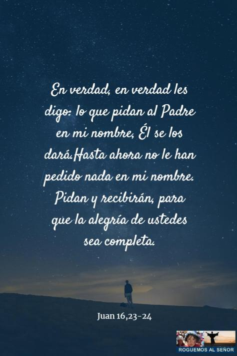 lo_que_pidan