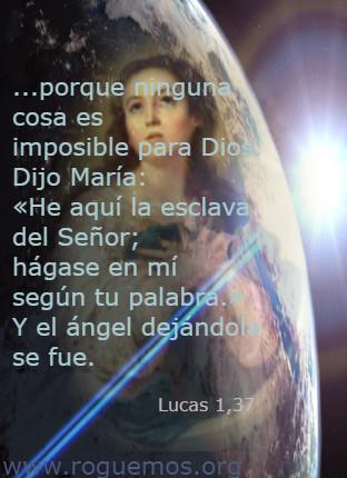 lucas-01-37