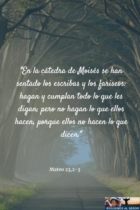 27_2_18_catedra