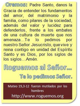 Mateo-19-03-12-2016-08-12