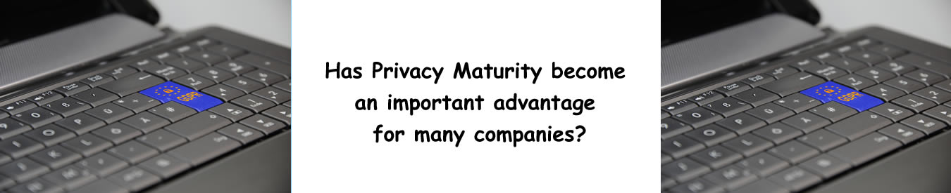 Has Privacy Maturity become an important advantage for many companies