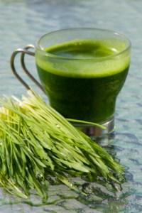 Weizengras Saft