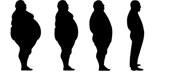 OBESITY'S DAMAGING EFFECTS ON THE KIDNEYS
