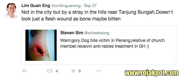 Dog Bite Wound Or DAP Propaganda? - The Rojak Pot
