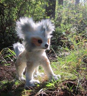 Orange-Masked Pup - CMWyvern
