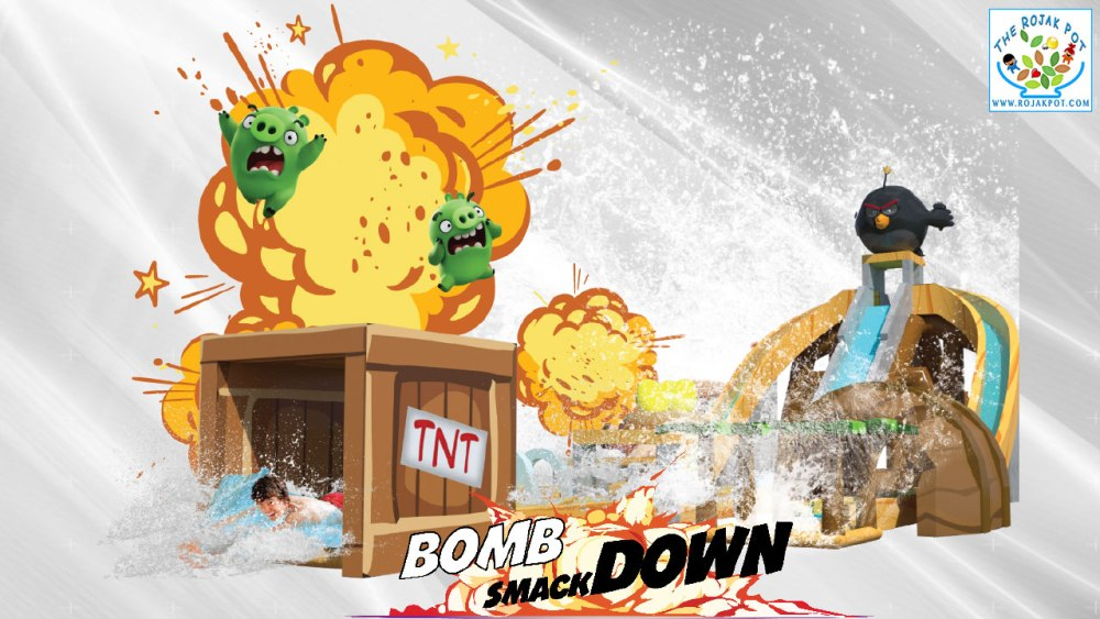 Angry Birds Splash Water World Bomb Smack Down