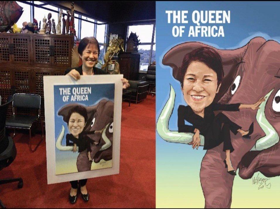 Limkokwing Queen of Africa 02