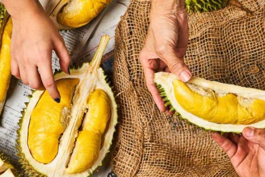 Can Eating Durian Before / After COVID-19 Vaccine KILL Us?