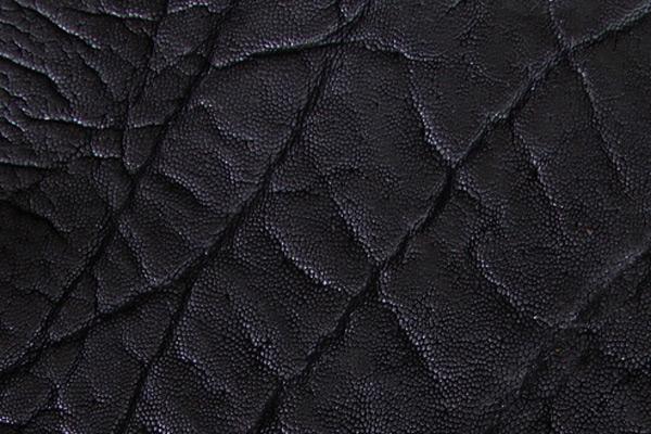 Elephant Leather  Roje Exotic Leather