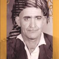 xwdadad-ali